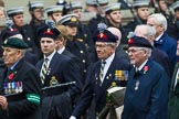 Remembrance Sunday at the Cenotaph 2015: Group D5, North Irish Horse & Irish Regiments Old Comrades Association. Cenotaph, Whitehall, London SW1, London, Greater London, United Kingdom, on 08 November 2015 at 11:52, image #613