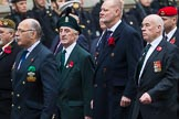 Remembrance Sunday at the Cenotaph 2015: Group D5, North Irish Horse & Irish Regiments Old Comrades Association. Cenotaph, Whitehall, London SW1, London, Greater London, United Kingdom, on 08 November 2015 at 11:52, image #617