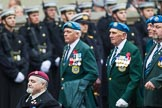 Remembrance Sunday at the Cenotaph 2015: Group D6, Northern Ireland Veterans' Association. Cenotaph, Whitehall, London SW1, London, Greater London, United Kingdom, on 08 November 2015 at 11:52, image #621