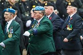 Remembrance Sunday at the Cenotaph 2015: Group D7, Irish United Nations Veterans Association. Cenotaph, Whitehall, London SW1, London, Greater London, United Kingdom, on 08 November 2015 at 11:52, image #624