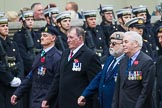 Remembrance Sunday at the Cenotaph 2015: Group D10, South Atlantic Medal Association. Cenotaph, Whitehall, London SW1, London, Greater London, United Kingdom, on 08 November 2015 at 11:52, image #630