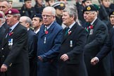 Remembrance Sunday at the Cenotaph 2015: Group D10, South Atlantic Medal Association. Cenotaph, Whitehall, London SW1, London, Greater London, United Kingdom, on 08 November 2015 at 11:53, image #631
