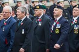Remembrance Sunday at the Cenotaph 2015: Group D10, South Atlantic Medal Association. Cenotaph, Whitehall, London SW1, London, Greater London, United Kingdom, on 08 November 2015 at 11:53, image #632