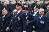 Remembrance Sunday at the Cenotaph 2015: Group D10, South Atlantic Medal Association. Cenotaph, Whitehall, London SW1, London, Greater London, United Kingdom, on 08 November 2015 at 11:53, image #634