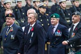 Remembrance Sunday at the Cenotaph 2015: Group D10, South Atlantic Medal Association. Cenotaph, Whitehall, London SW1, London, Greater London, United Kingdom, on 08 November 2015 at 11:53, image #636