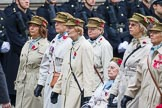 Remembrance Sunday at the Cenotaph 2015: Group D12, First Aid Nursing Yeomanry (Princess Royal's Volunteers Corps). Cenotaph, Whitehall, London SW1, London, Greater London, United Kingdom, on 08 November 2015 at 11:53, image #643