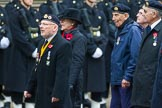 Remembrance Sunday at the Cenotaph 2015: Group D13, Association of Jewish Ex-Servicemen & Women. Cenotaph, Whitehall, London SW1, London, Greater London, United Kingdom, on 08 November 2015 at 11:53, image #645