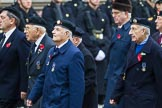 Remembrance Sunday at the Cenotaph 2015: Group D13, Association of Jewish Ex-Servicemen & Women. Cenotaph, Whitehall, London SW1, London, Greater London, United Kingdom, on 08 November 2015 at 11:53, image #650
