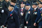 Remembrance Sunday at the Cenotaph 2015: Group D13, Association of Jewish Ex-Servicemen & Women. Cenotaph, Whitehall, London SW1, London, Greater London, United Kingdom, on 08 November 2015 at 11:53, image #651