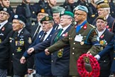 Remembrance Sunday at the Cenotaph 2015: Group D20, Bond Van Wapenbroeders. Cenotaph, Whitehall, London SW1, London, Greater London, United Kingdom, on 08 November 2015 at 11:55, image #712