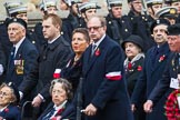 Remembrance Sunday at the Cenotaph 2015: Group D21, Polish Ex-Combatants Association in Great Britain Trust Fund. Cenotaph, Whitehall, London SW1, London, Greater London, United Kingdom, on 08 November 2015 at 11:55, image #719