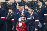 Remembrance Sunday at the Cenotaph 2015: Group D21, Polish Ex-Combatants Association in Great Britain Trust Fund. Cenotaph, Whitehall, London SW1, London, Greater London, United Kingdom, on 08 November 2015 at 11:55, image #720