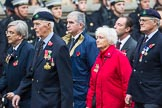Remembrance Sunday at the Cenotaph 2015: Group D22, Stowarzyszenie Polskich Kombatantów Limited. Cenotaph, Whitehall, London SW1, London, Greater London, United Kingdom, on 08 November 2015 at 11:55, image #724