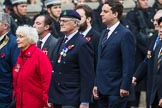 Remembrance Sunday at the Cenotaph 2015: Group D22, Stowarzyszenie Polskich Kombatantów Limited. Cenotaph, Whitehall, London SW1, London, Greater London, United Kingdom, on 08 November 2015 at 11:55, image #725