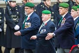Remembrance Sunday at the Cenotaph 2015: Group D27, Foreign Legion Association. Cenotaph, Whitehall, London SW1, London, Greater London, United Kingdom, on 08 November 2015 at 11:56, image #739