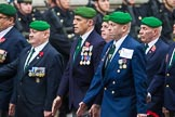 Remembrance Sunday at the Cenotaph 2015: Group D27, Foreign Legion Association. Cenotaph, Whitehall, London SW1, London, Greater London, United Kingdom, on 08 November 2015 at 11:56, image #740