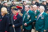 Remembrance Sunday at the Cenotaph 2015: Group F1, Blind Veterans UK. Cenotaph, Whitehall, London SW1, London, Greater London, United Kingdom, on 08 November 2015 at 11:57, image #757