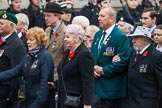 Remembrance Sunday at the Cenotaph 2015: Group F1, Blind Veterans UK. Cenotaph, Whitehall, London SW1, London, Greater London, United Kingdom, on 08 November 2015 at 11:57, image #777