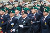 Remembrance Sunday at the Cenotaph 2015: Group E1, Royal Marines Association. Cenotaph, Whitehall, London SW1, London, Greater London, United Kingdom, on 08 November 2015 at 11:58, image #792