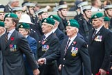 Remembrance Sunday at the Cenotaph 2015: Group E1, Royal Marines Association. Cenotaph, Whitehall, London SW1, London, Greater London, United Kingdom, on 08 November 2015 at 11:58, image #797