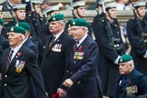 Remembrance Sunday at the Cenotaph 2015: Group E1, Royal Marines Association. Cenotaph, Whitehall, London SW1, London, Greater London, United Kingdom, on 08 November 2015 at 11:58, image #798