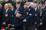 Remembrance Sunday at the Cenotaph 2015: Group E2, Royal Naval Association. Cenotaph, Whitehall, London SW1, London, Greater London, United Kingdom, on 08 November 2015 at 11:58, image #805
