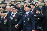 Remembrance Sunday at the Cenotaph 2015: Group E2, Royal Naval Association. Cenotaph, Whitehall, London SW1, London, Greater London, United Kingdom, on 08 November 2015 at 11:58, image #807