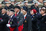 Remembrance Sunday at the Cenotaph 2015: Group E2, Royal Naval Association. Cenotaph, Whitehall, London SW1, London, Greater London, United Kingdom, on 08 November 2015 at 11:58, image #809