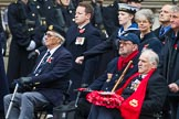 Remembrance Sunday at the Cenotaph 2015: Group E3, Merchant Navy Association. Cenotaph, Whitehall, London SW1, London, Greater London, United Kingdom, on 08 November 2015 at 11:59, image #816