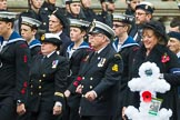 Remembrance Sunday at the Cenotaph 2015: Group E3, Merchant Navy Association. Cenotaph, Whitehall, London SW1, London, Greater London, United Kingdom, on 08 November 2015 at 11:59, image #819