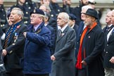 Remembrance Sunday at the Cenotaph 2015: Group E6, HMS Andromeda Association. Cenotaph, Whitehall, London SW1, London, Greater London, United Kingdom, on 08 November 2015 at 11:59, image #841