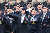 Remembrance Sunday at the Cenotaph 2015: Group E16, Type 42 Association. Cenotaph, Whitehall, London SW1, London, Greater London, United Kingdom, on 08 November 2015 at 12:00, image #887