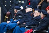 Remembrance Sunday at the Cenotaph 2015: Group E22, Royal Naval Benevolent Trust. Cenotaph, Whitehall, London SW1, London, Greater London, United Kingdom, on 08 November 2015 at 12:01, image #919