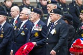 Remembrance Sunday at the Cenotaph 2015: Group E25, Submariners Association. Cenotaph, Whitehall, London SW1, London, Greater London, United Kingdom, on 08 November 2015 at 12:02, image #927