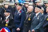 Remembrance Sunday at the Cenotaph 2015: Group E25, Submariners Association. Cenotaph, Whitehall, London SW1, London, Greater London, United Kingdom, on 08 November 2015 at 12:02, image #929