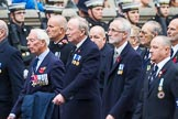 Remembrance Sunday at the Cenotaph 2015: Group E27, Broadsword Association. Cenotaph, Whitehall, London SW1, London, Greater London, United Kingdom, on 08 November 2015 at 12:02, image #944