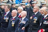 Remembrance Sunday at the Cenotaph 2015: Group E28, Aircraft Handlers Association. Cenotaph, Whitehall, London SW1, London, Greater London, United Kingdom, on 08 November 2015 at 12:02, image #951