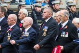 Remembrance Sunday at the Cenotaph 2015: Group E28, Aircraft Handlers Association. Cenotaph, Whitehall, London SW1, London, Greater London, United Kingdom, on 08 November 2015 at 12:02, image #952
