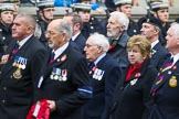 Remembrance Sunday at the Cenotaph 2015: Group E28, Aircraft Handlers Association. Cenotaph, Whitehall, London SW1, London, Greater London, United Kingdom, on 08 November 2015 at 12:02, image #953