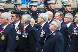 Remembrance Sunday at the Cenotaph 2015: Group E28, Aircraft Handlers Association. Cenotaph, Whitehall, London SW1, London, Greater London, United Kingdom, on 08 November 2015 at 12:02, image #955