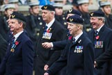 Remembrance Sunday at the Cenotaph 2015: Group E29, Aircrewmans Association. Cenotaph, Whitehall, London SW1, London, Greater London, United Kingdom, on 08 November 2015 at 12:02, image #963