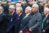Remembrance Sunday at the Cenotaph 2015: Group E31, The Fisgard Association. Cenotaph, Whitehall, London SW1, London, Greater London, United Kingdom, on 08 November 2015 at 12:03, image #967