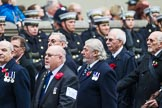 Remembrance Sunday at the Cenotaph 2015: Group E38, Fleet Air Arm Safety Equipment & Survival Association. Cenotaph, Whitehall, London SW1, London, Greater London, United Kingdom, on 08 November 2015 at 12:03, image #1000