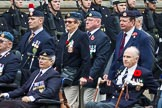 Remembrance Sunday at the Cenotaph 2015: Group F16, National Gulf Veterans & Families Association. Cenotaph, Whitehall, London SW1, London, Greater London, United Kingdom, on 08 November 2015 at 12:06, image #1083