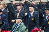 Remembrance Sunday at the Cenotaph 2015: Group F18, Memorable Order of Tin Hats. Cenotaph, Whitehall, London SW1, London, Greater London, United Kingdom, on 08 November 2015 at 12:06, image #1098