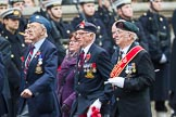 Remembrance Sunday at the Cenotaph 2015: Group F19, Suez Veterans Association. Cenotaph, Whitehall, London SW1, London, Greater London, United Kingdom, on 08 November 2015 at 12:06, image #1102