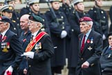 Remembrance Sunday at the Cenotaph 2015: Group F19, Suez Veterans Association. Cenotaph, Whitehall, London SW1, London, Greater London, United Kingdom, on 08 November 2015 at 12:06, image #1103