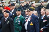 Remembrance Sunday at the Cenotaph 2015: Group F20, Aden Veterans Association. Cenotaph, Whitehall, London SW1, London, Greater London, United Kingdom, on 08 November 2015 at 12:06, image #1111
