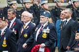 Remembrance Sunday at the Cenotaph 2015: Group F20, Aden Veterans Association. Cenotaph, Whitehall, London SW1, London, Greater London, United Kingdom, on 08 November 2015 at 12:06, image #1113
