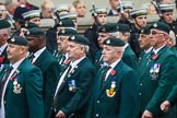 Remembrance Sunday at the Cenotaph 2015: Group A1, 1LI Association. Cenotaph, Whitehall, London SW1, London, Greater London, United Kingdom, on 08 November 2015 at 12:07, image #1148